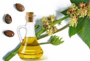 Касторовое масло используют для лечения наружного геморроя