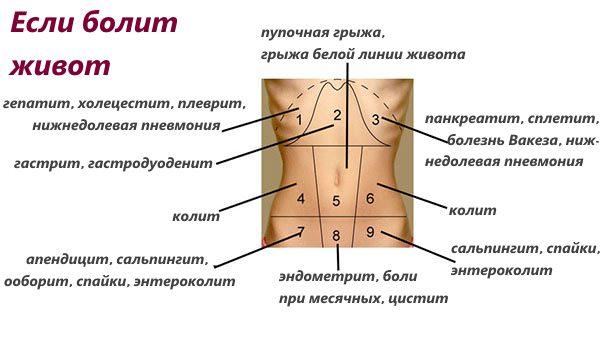 Болит живот внизу слева при беременности