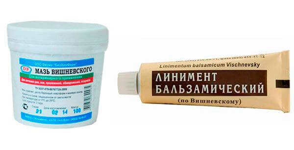 Мазь Вишневского применяют для лечения геморроя