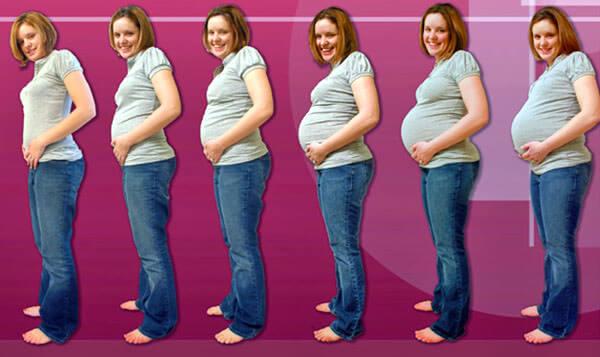 Гормональные изменения и набор веса способствуют развитию геморроя при беременности