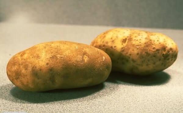 Из картофеля изготавливают свечи против геморроя