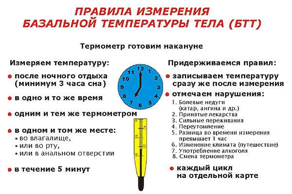 Правила измерения базальной температуры тела