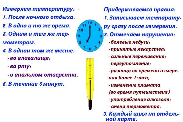 Правила проведения измерения базальной температуры